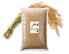 大分 自然栽培 アムリターラ農園米「天日掛け干し」